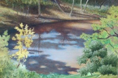 Shadowed Pond with Reflections